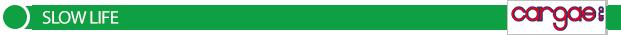 striscia-verde-cargas